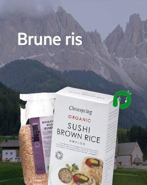 Brune Ris